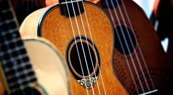 what is the best ukulele brand